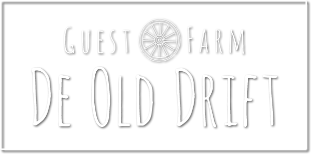 De Old Drift
